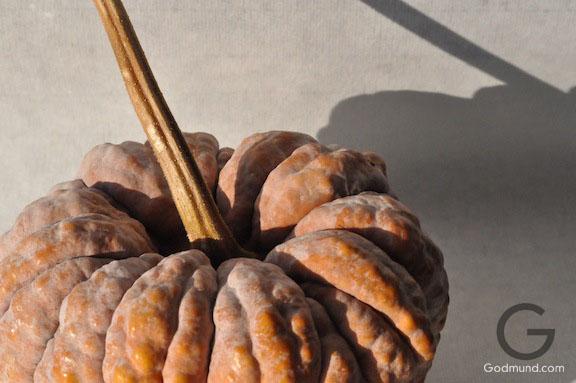 One Mysterious Japanese Pumpkin