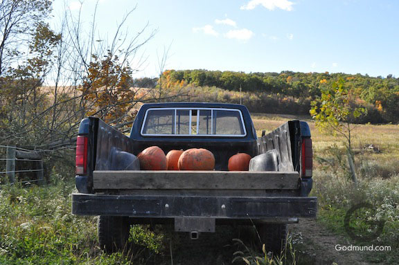 F-150 with pumpkins